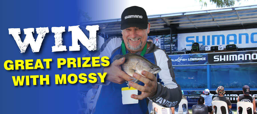 WIN Great Prizes with Mossy